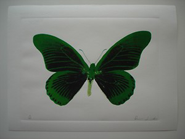 Damian Hirst Butterfly original Photogravur.